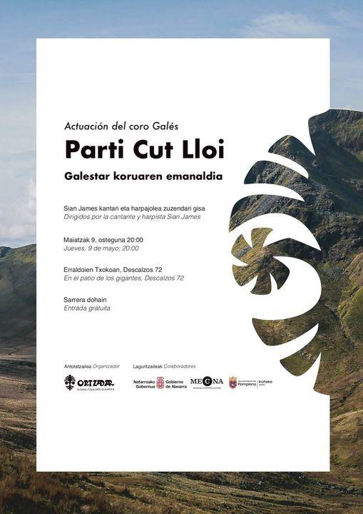 Parti_cut_lloi